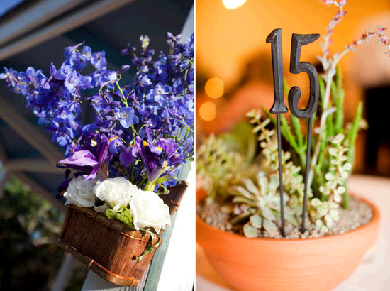 Vibrant blue bonnets, white flowers, and rich succulents for wedding flowers