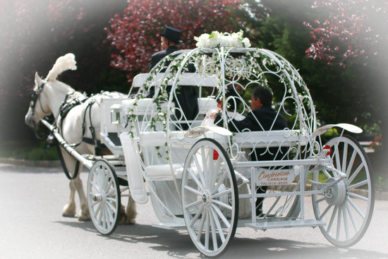 photo of Cinderella Horse and Carriage for Weddings