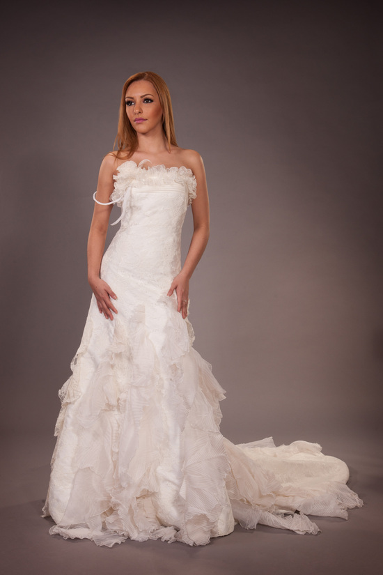 Hannibal Laguna for Pronovias Wedding Gown