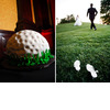Grooms-wedding-cake-wedding-reception-golf-ball-green-bride-groom-play-on-golf-course-in-wedding-dress-and-tux.square