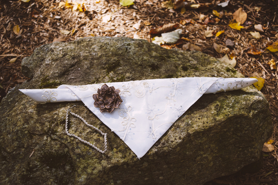 Dog Bandana for Fall Wedding