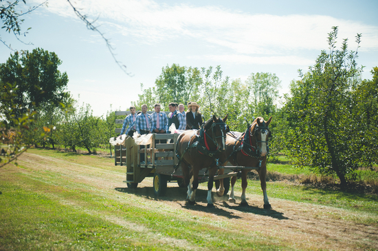 Groomsmen Riding in on a Horse Cart