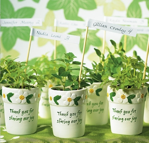 Adorable and eco-chic white mini flower pots with sweet saying painted in green and yellow