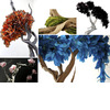 Fantasy-floral-arrangements-non-traditional-feathers-shells-branches-to-inspire-whimsical-fantasy-wedding-vibe.square