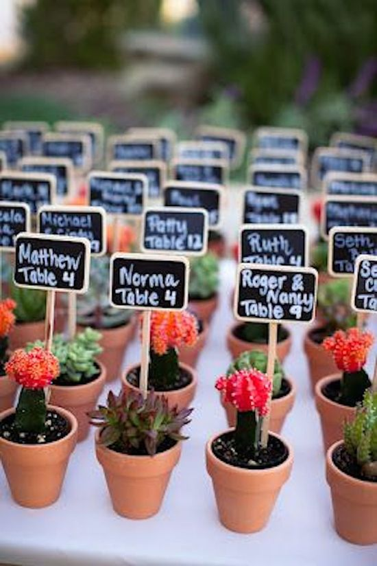 Potted Cacti as Wedding Favors