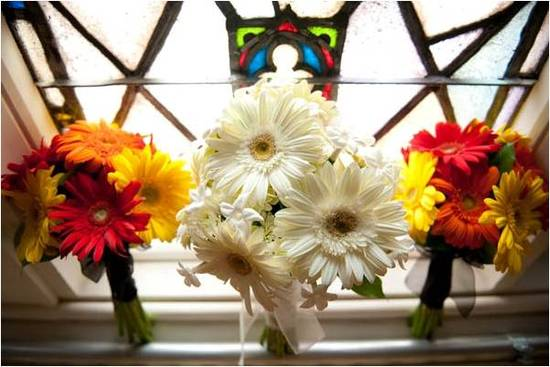 Bride's all white Gerbera daisy bridal bouquet surrounded by bridesmaids' yellow, red, and orange bo