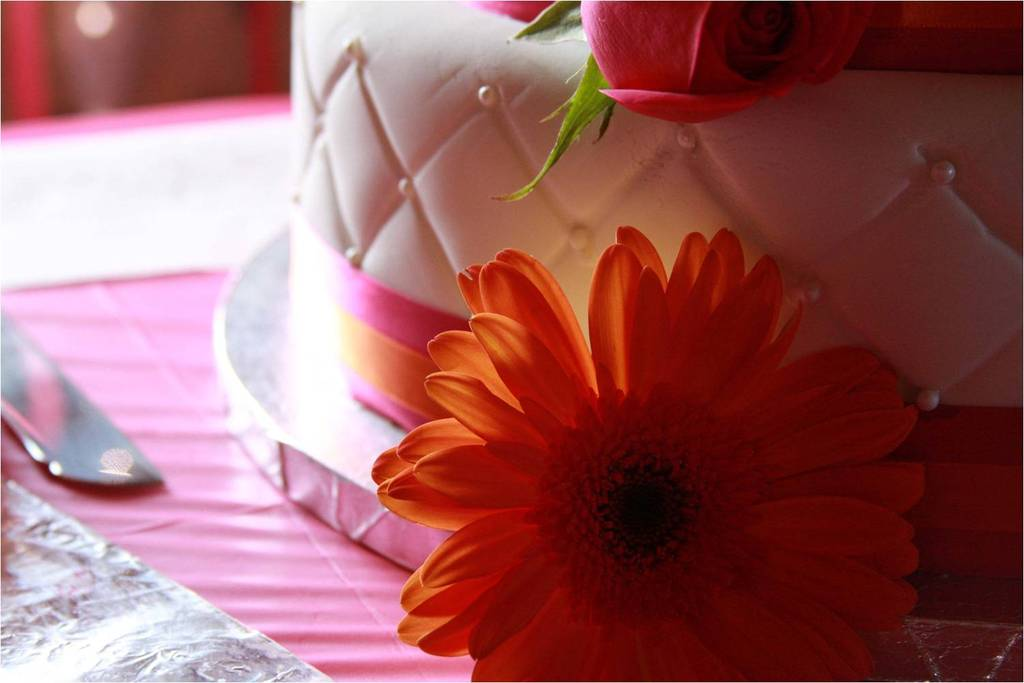 Wedding-detail-shot-white-wedding-cake-orange-pink-wedding-color-palette.full