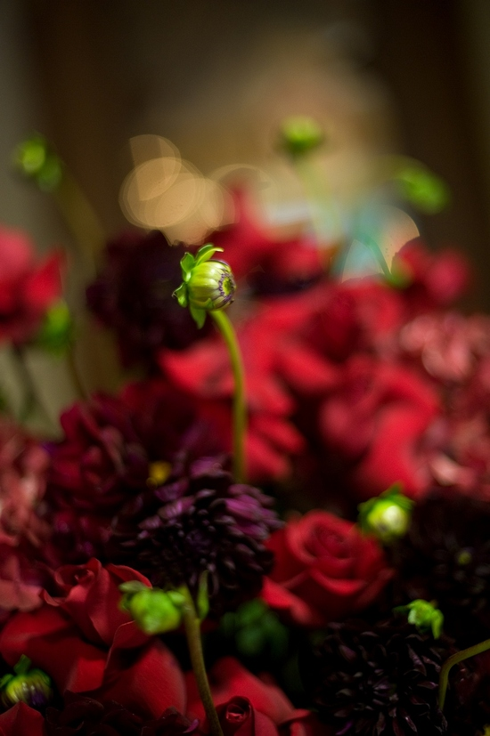 Wedding flowers were dramatic with deep red roses, eggplant purple flowers, and touches of green