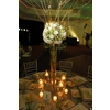 Finished-product-enchanted-garden-wedding-reception-green-natural-wood-gold-tablescape-high-topiari-centerpiece.square
