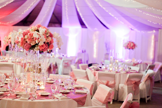 Romantic and Modern Reception in Shades of Pink