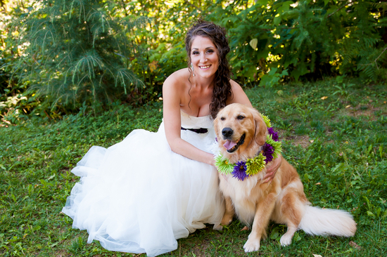 photo of The Bride and Her Dog