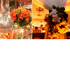 Bright-orange-floral-centerpieces-accented-with-green-succulents-grapes-ivory-flowers-reception-decor-chandelier.square