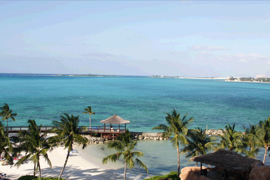 Gorgeous cobalt blue ocean, white sand, and tropical palm trees in the Wyndham Nassau Resort