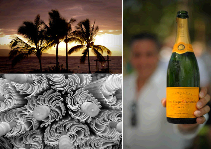 After saying I Do, wedding guests celebrated with the groom's favorite champagne, Veuve Cliquot