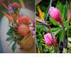 Tropical-hawaiian-destination-wedding-on-the-beach-bright-pink-flowers-orange-green-natural-organic-wedding-reception-decor.square
