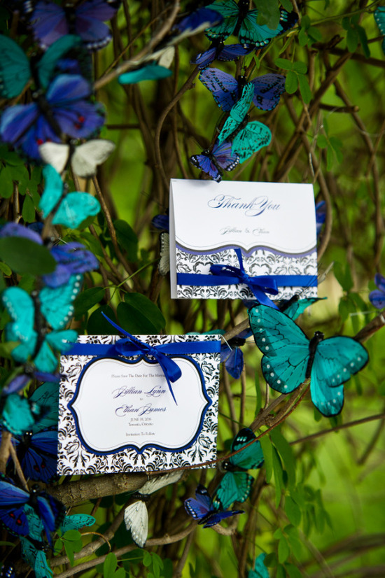 Wedding Stationery Inspiration - Weddingstar Love Bird Damask Collection