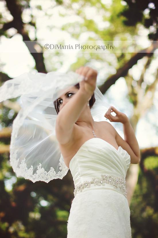 photo of DiMattia Photography