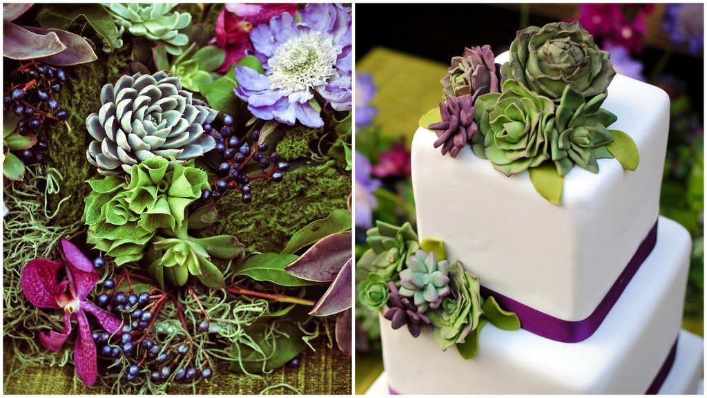 Fondant-succulents-white-square-tiered-wedding-cake-purple-ribbon-gorgeous-fondant-succulents.full