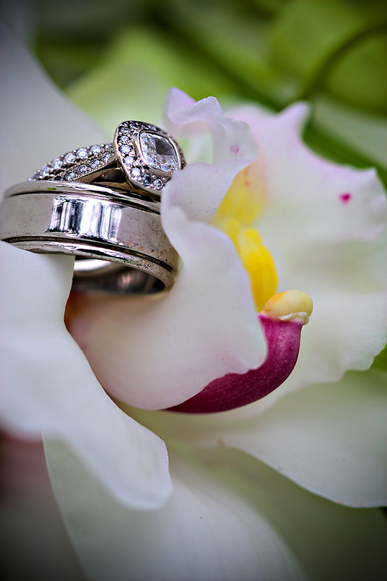 This white orchid has a purple and yellow center and is holding a platinum engagement ring and weddi