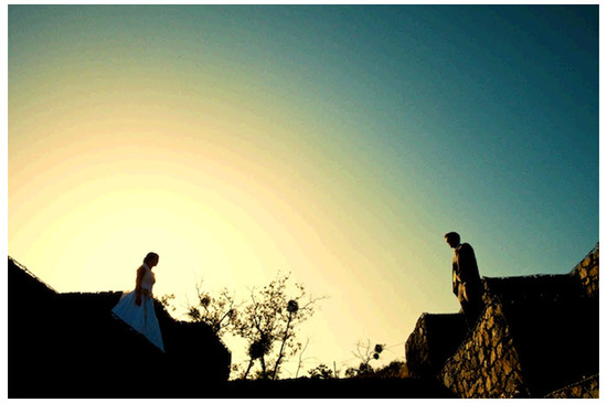 Artistic wedding photo of bride and groom during sunset