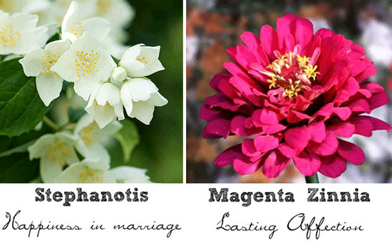 White Stephanotis flowers represent happiness in marriage; Zinnias symbolize lasting affection