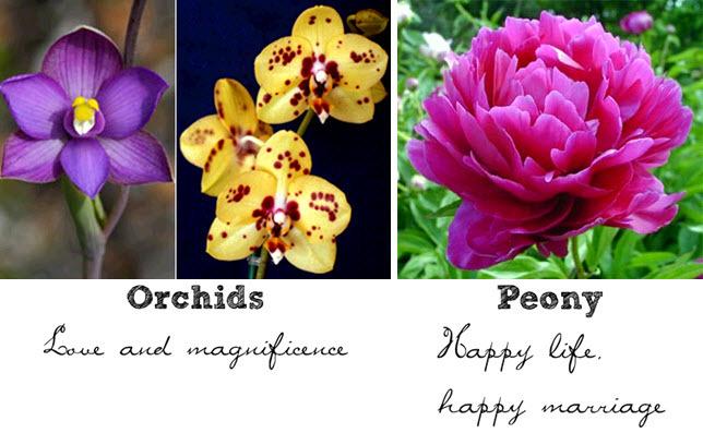 Wedding-flowers-symbolism-orchids-purple-yellow-pink-peonies.full
