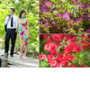 Fashion-e-session-engagement-photos-bright-vibrant-purple-red-flowers-chic-print-cocktail-dress.square