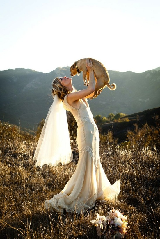 Adorable Shot of Bride and her Pup
