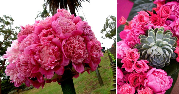 Hot-pink-monochromatic-wedding-flowers-topiari-succulents-peonies-carnations.full