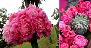 photo of Wedding Flower Friday: Pink Monochromatic Pave Style Floral Arrangements