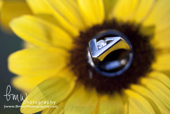 The Flower and the Rings