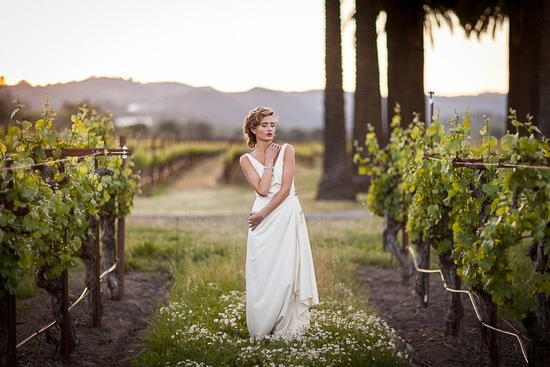 Winery Grapes Bride