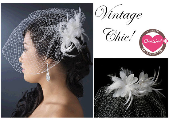 photo of This fabulous birdcage veil is perfect for the retro bride looking for some vintage chic glamor.