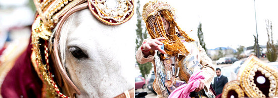 Hindu groom arrives at wedding ceremony on white horse