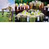 Chic-outdoor-whimsical-wedding-lime-green-sage-green-wood-rose-pink-tablescape-chuppa.square