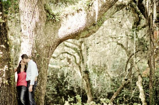 Nearlyweds kiss under huge moss draped oak tree in Florida state park