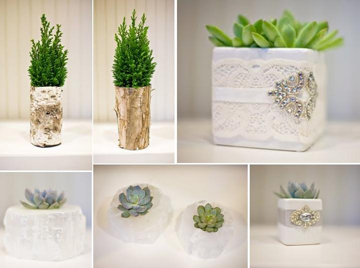 Lush birch trees in natural bark tubes; green and grey succulents in white lace boxes and white quar
