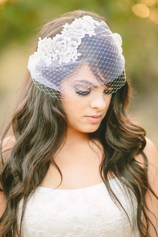 Lovely Birdcage veil