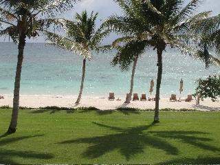 Punta-cana-dominican-republic-destination-wedding-location-beach-ocean-tropical.full