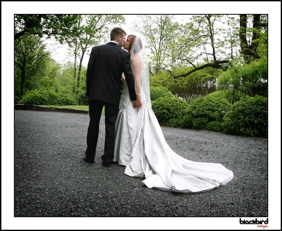 Beautiful photo of bride and groom from behind, standing in street with forest surrounding them