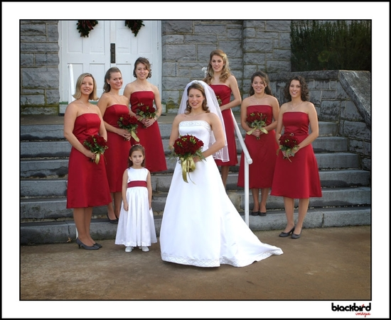 Beautiful formal wedding photo, bride in white strapless wedding dress, bridesmaids wear red straple