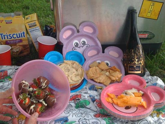The picnic- champagne, chocolate covered strawberries, cheese, crackers, and more