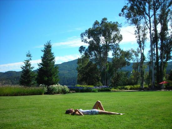 Napa, CA wine country- a beautiful place for your engagement party, bachelorette party, honeymoon, a