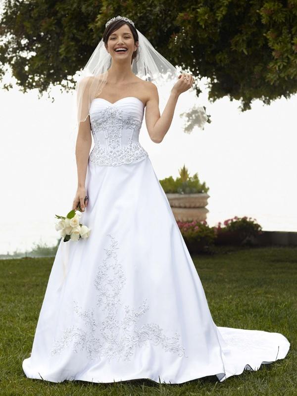 Wedding-dress-davids-bridal-gowns-fall-2011-wg3178.full