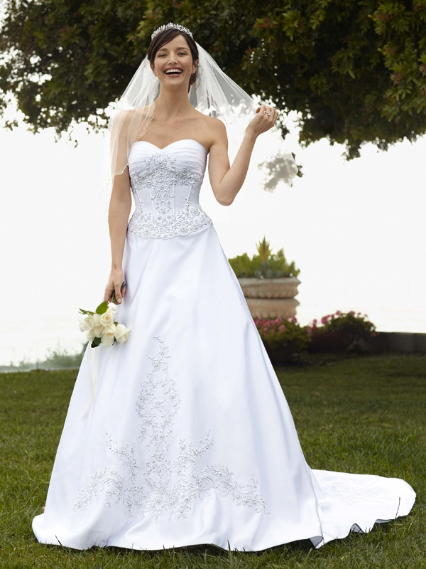 Wedding-dress-davids-bridal-gowns-fall-2011-wg3178.original