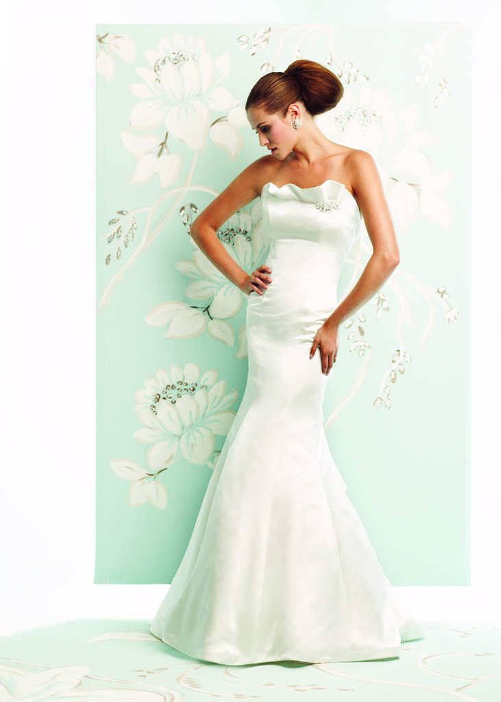 photo of 4152 Dress