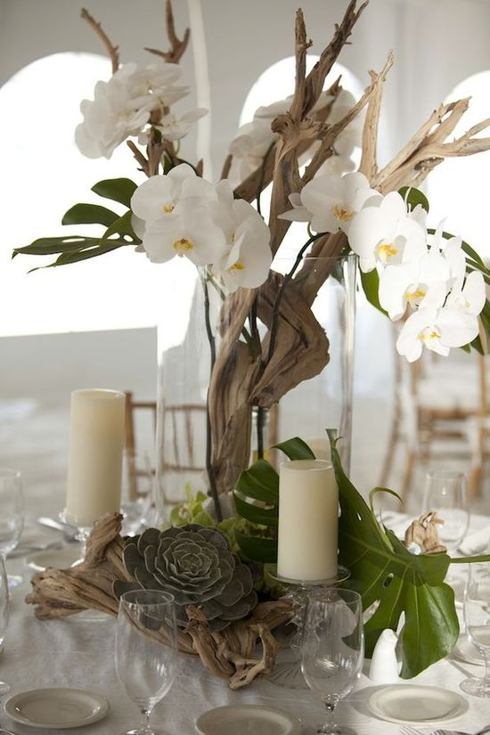 White Orchid Wedding Decor. Decorative Concrete Resurfacing. Rooms For Rent In Gaithersburg Md. Outdoor Decor Catalog. Cool Things To Have In Your Room. Counter Height Dining Room Sets. Rooms In Tahoe. Thomasville Dining Room Table. Vintage Decorations