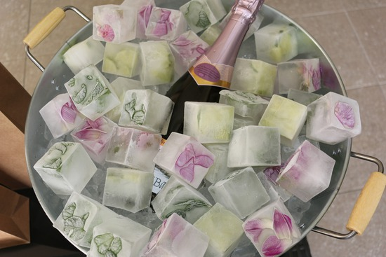 Amore Events - Floral Ice Cube