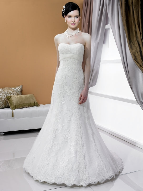 J6180-spring-2011-white-lace-wedding-dress-a-line-strapless.full