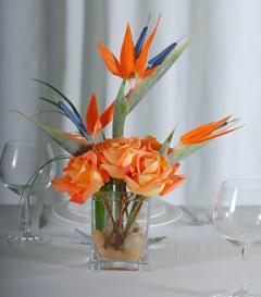 photo of Birds of Paradise & Orange Rose Centerpiece